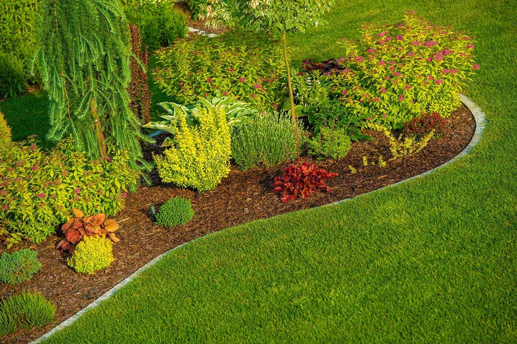 3 Landscaping Trends to Pay Attention to This Year – Lawn