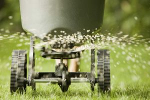 Lawn Treatments Westerville OH